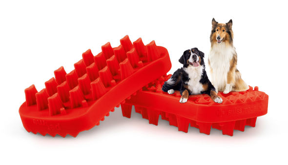 Pet + Me Silicone Brush Red