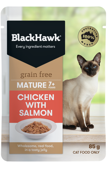 Black Hawk Cat Wet Mature  - Chicken w/ Salmon 85g (Individual)