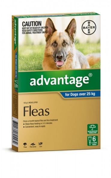 Advantage Dog Over 25Kg - 6 Pack