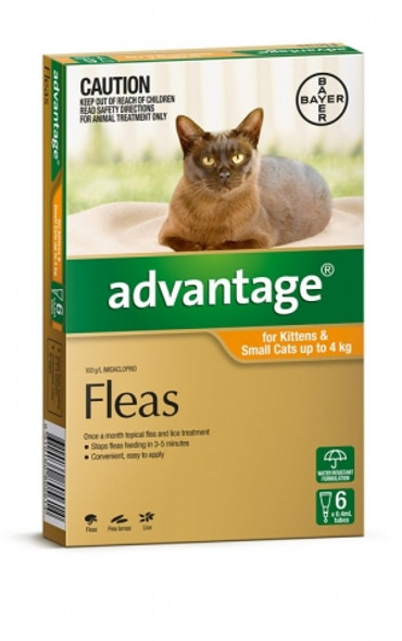 Advantage Cat Up To 4Kg - 6 Pack