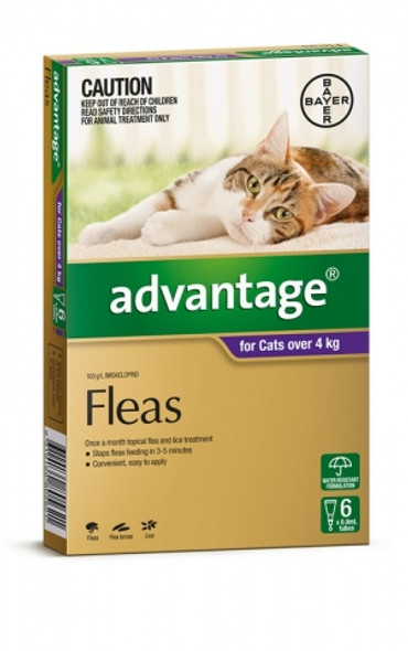 Advantage Cat Over 4Kg - 6 Pack