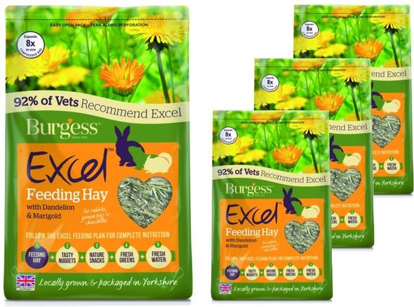 Burgess - Timothy Hay Dandelion & Marigold Herbage