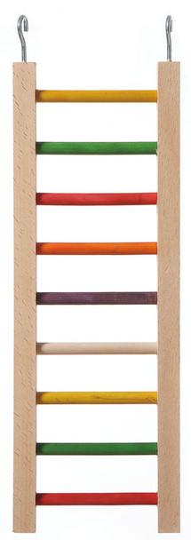 Parrot Ladder 9 Rungs