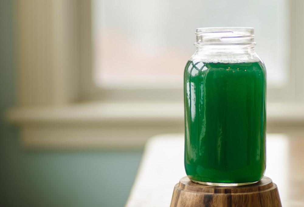 Spirulina Powder - add it to fresh spring water!