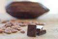 Cacao Beans (Ecuador) Certified Organic 454g / 1 lb