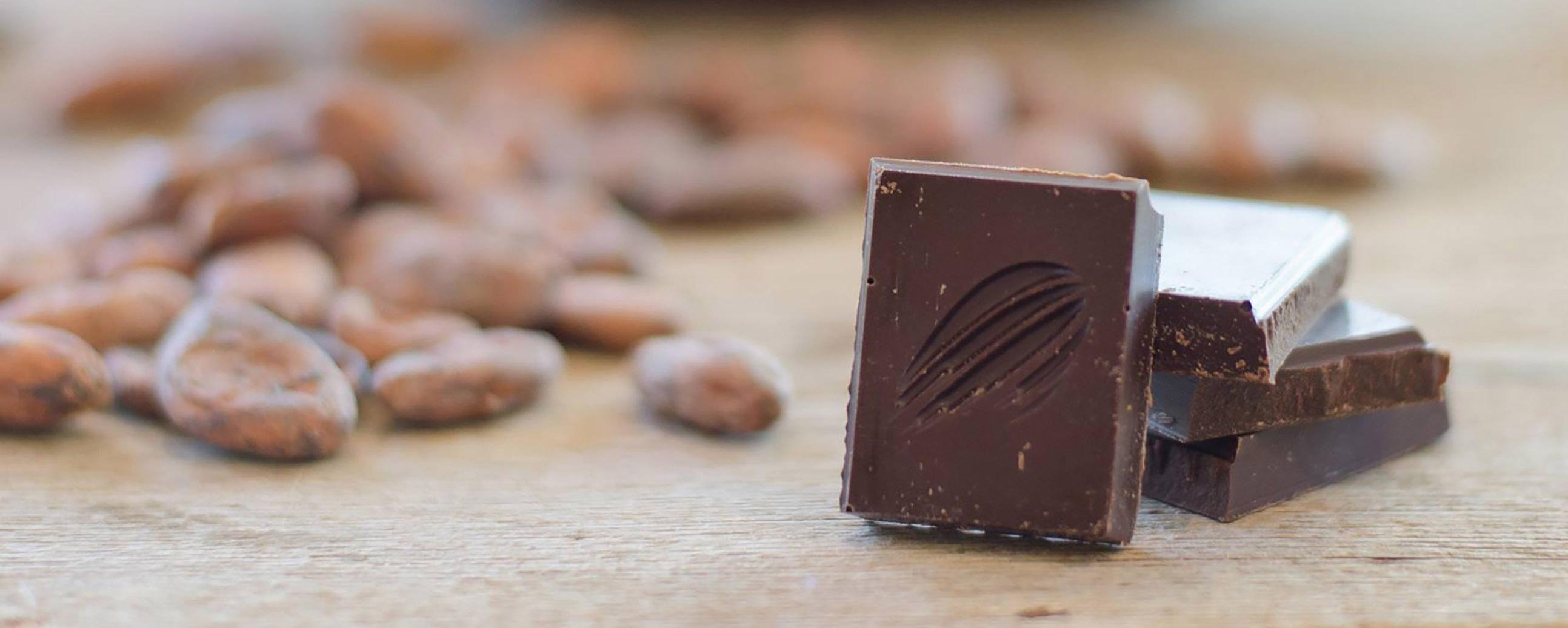 cacaobean.jpg