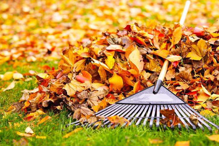 Your Fall Checklist: How to Prepare Your Home