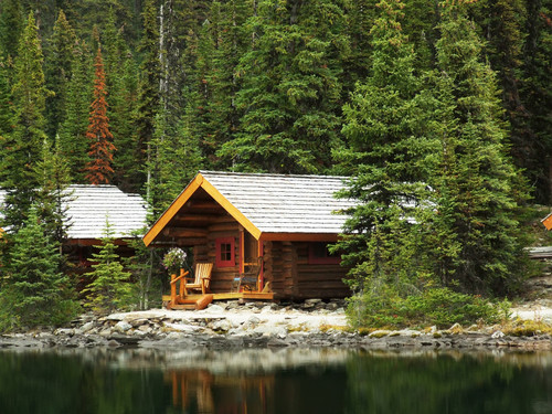 How To Live Off Grid: A Beginner's Guide