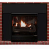 Buck Stove Model 32 Vent Free Gas Stove & Free Standing Fireplace