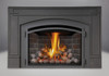 NAPOLEON DIRECT VENT GAS FIREPLACE INSERT
