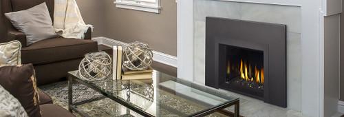 Napoleon Oakville GDIG3 Contemporary Gas Fireplace Insert