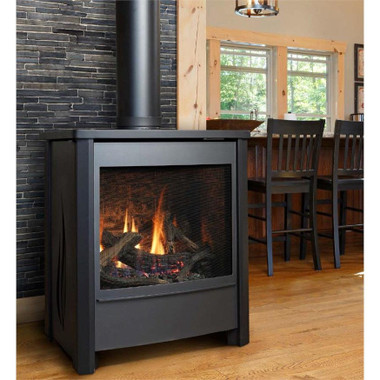 Outdoor Vent Covers >> kingsman FDV451 Free Standing Direct Vent Gas Stove