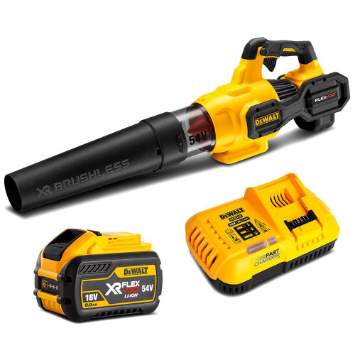 Dewalt 54v XR Flexvolt Axial Blower Combo Kit