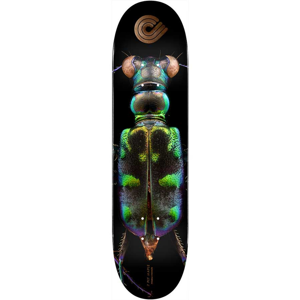 "Powell Peralta BISS Tiger Beetle Deck 8.25"" x 31.95"""