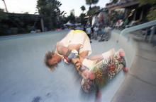 """Dogtown Web Old School Reissue Skateboard Deck 10.25"""" x 30.825"""""""
