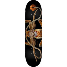 """Powell Peralta BISS Marion Moth Deck 8.25"""" x 31.95"""""""