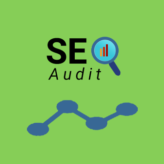 SEO Audit For 100 Hours