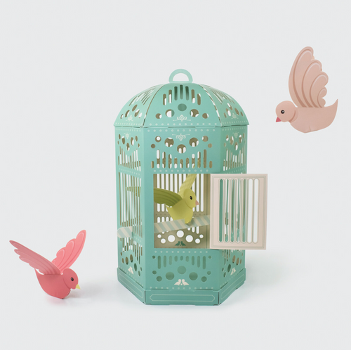Birdcage and Butterfly Lepidopterarium - Create Your Own