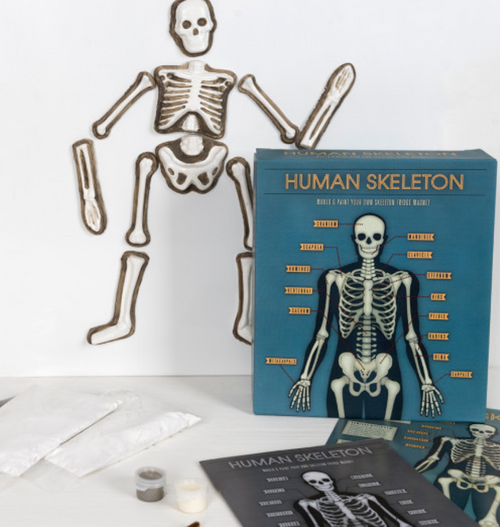 Make Your Own Glow in the Dark Skeleton