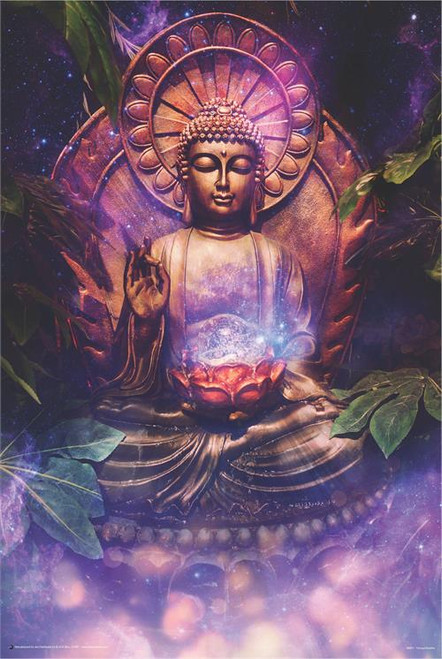 Tranquil Buddha Poster 24in x 36in Image