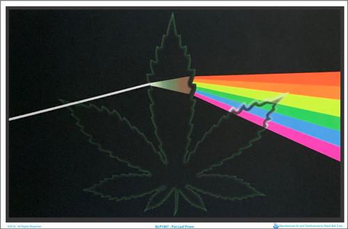 Product Image for Pot Leaf Prism Black Llight Poster