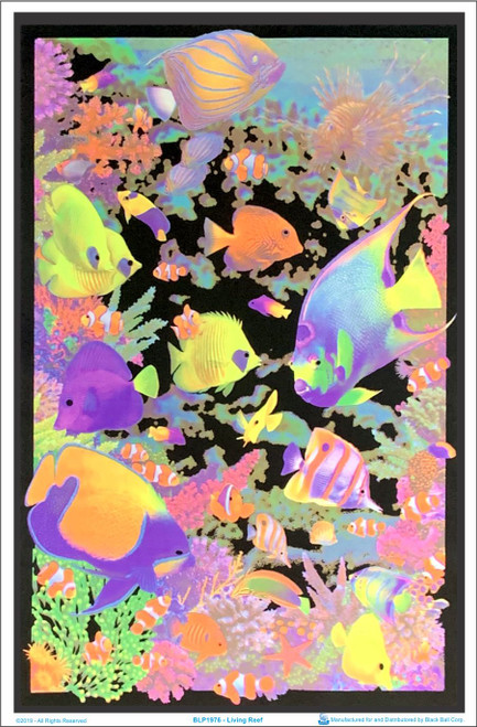 Product Image for Living Reef Black Light Poster