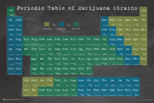 Periodic Table of Marijuana Poster 36x24 inches