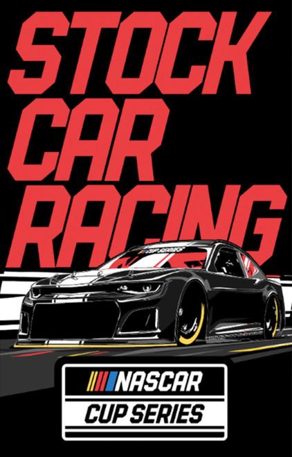 Nascar Stock Car Racing Poster 24x36 inch