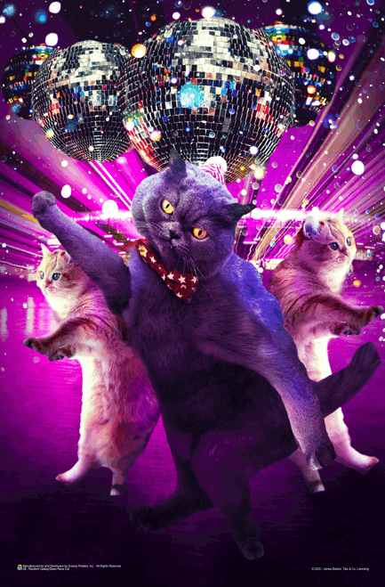 """Disco Cat Rave by James Booker Mini Poster - 11"""" x 17"""""""