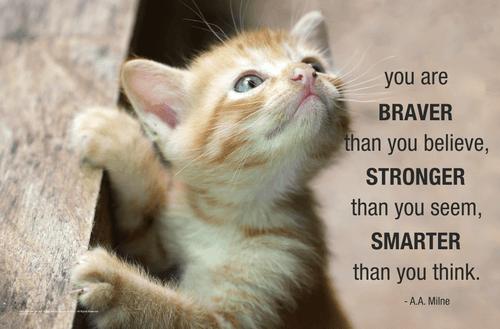You Are Braver Mini Poster - 17x11
