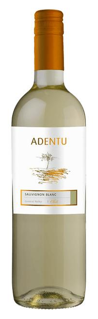 Siegal Adentu Sauvignon Blanc 2019 750mL
