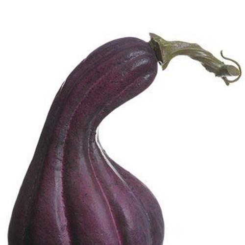 """6.5"""" Gooseneck Gourd"""