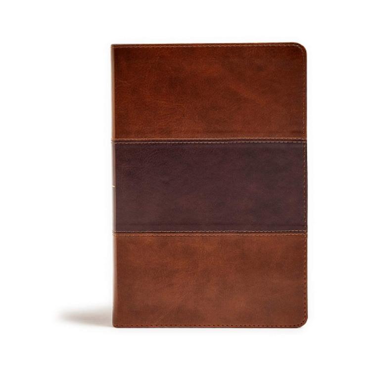 KJV Giant Print Reference Bible, Saddle Brown, IDX