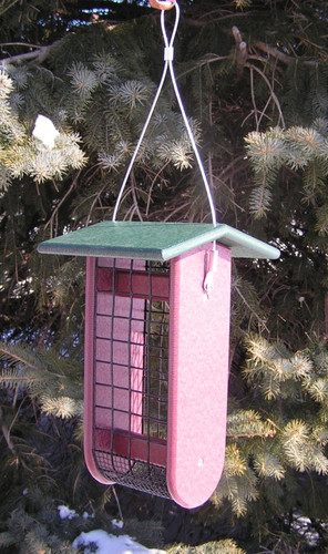 Raw Peanut Bird Feeder | Poly Lumber Bird Feeders