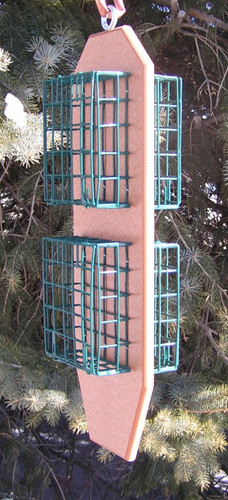 Quad Suet Bird Feeder | Best Suet Feeder Wild Birds