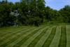 exmark Lawn Stripers