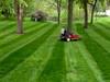 eXmark Lawn Striping