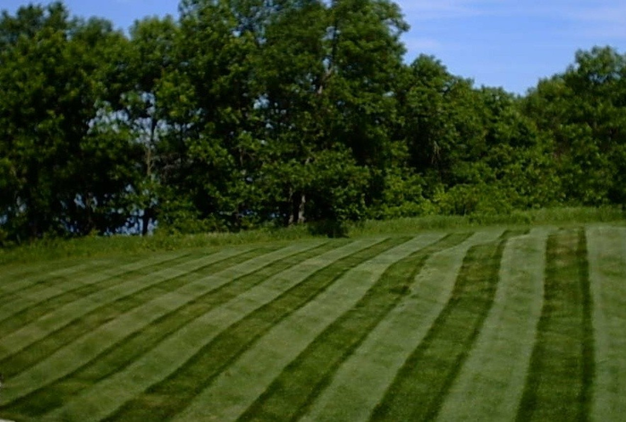 Lawn stripes, customer photo.
