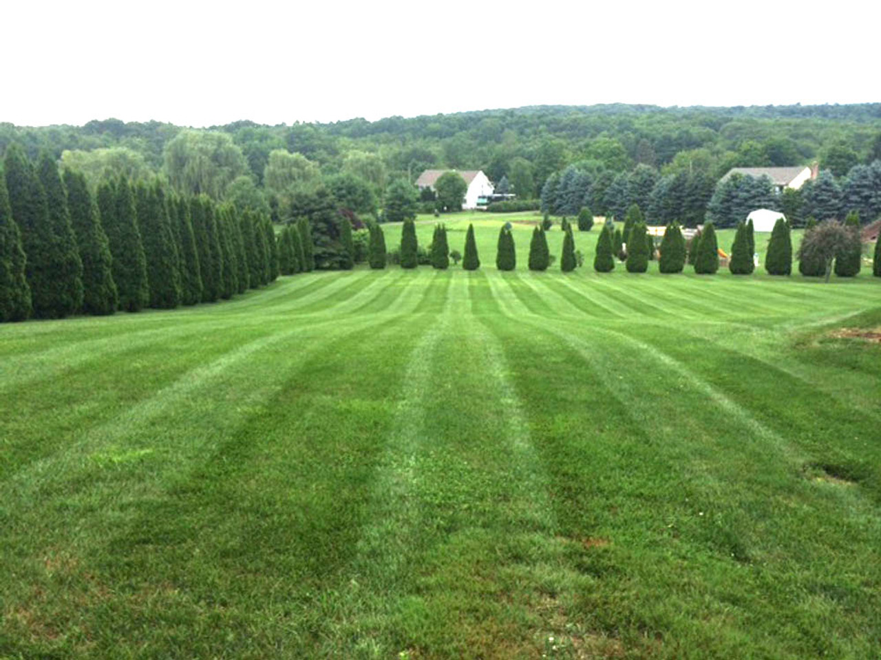 After mowing with turf striper installed (Customer supplied photo)