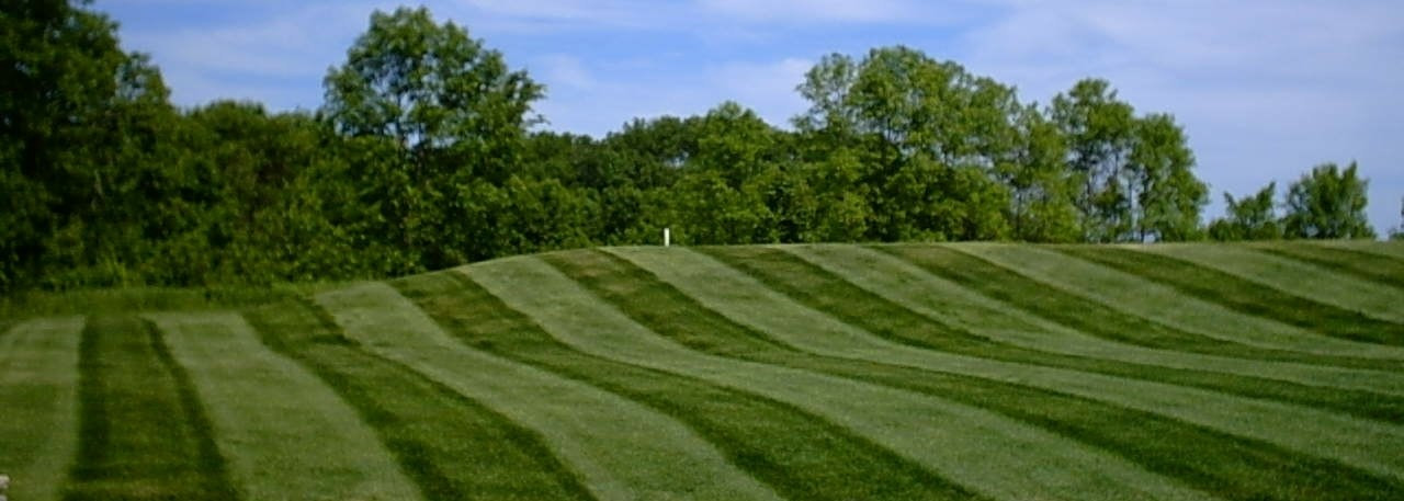 lawn striping on grass