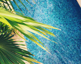 When Is the Best Time to Open Your Swimming Pool?