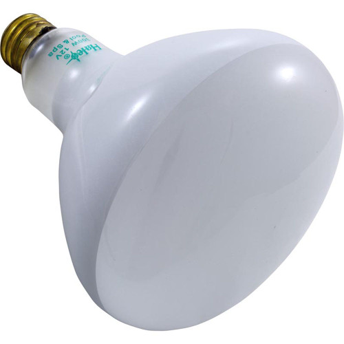 Replacement Bulb, Flood Lamp, 300w, 12v