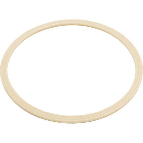 Flat Gasket - Dyna Flo Skim Filter