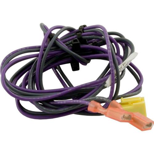 Wire Harness, Zodiac Jandy Lxi, Pressure Switch
