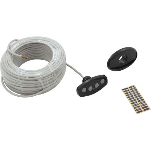 Control Panel, Pentair iS4, 100ft Cable, Black