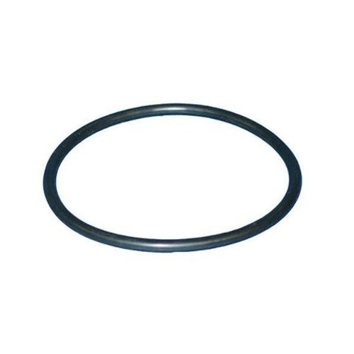 "Heater O-Ring, 4"" For HT Heaters Series"