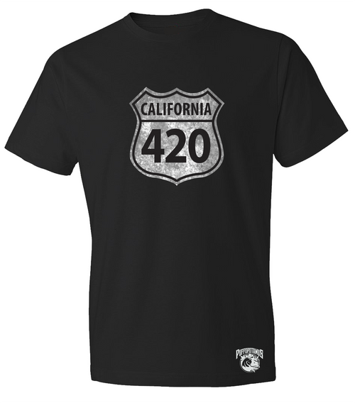California Route 420