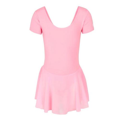 Nichols School of Dance Pink Leotard With Skirt