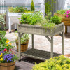 VegTrug Herb Planter - Grey