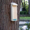 Wooden Solitary Bee House
